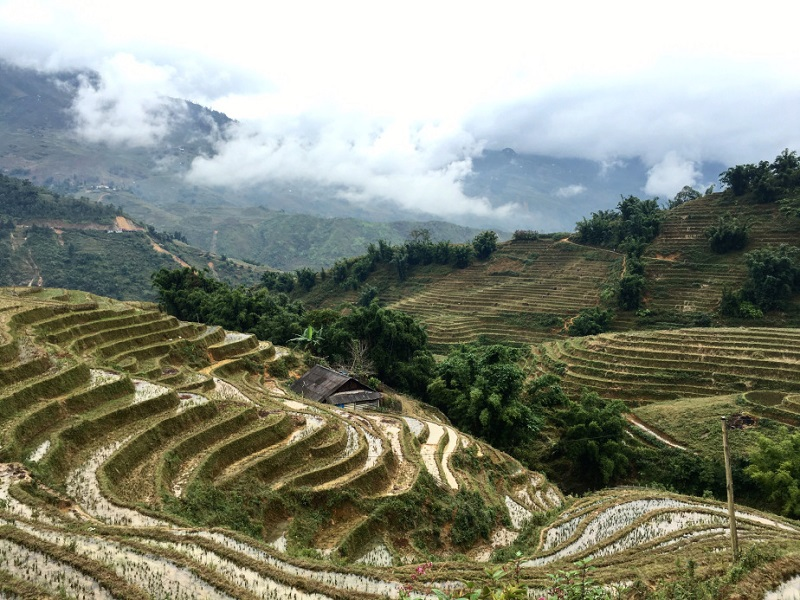 sapa-resized